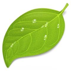 Mac 用ウェブコーディングアプリ [ Coda 2 ] ファーストインプレッション