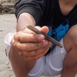 GW レジャーに最適なマテ貝取り!香川県観音寺市豊浜町の一の宮海岸に行ってきました〜。