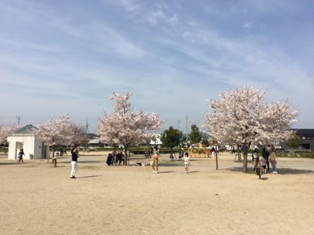 香川県高松市木太町にある「木太中央公園」に行ってきました〜。(^o^)